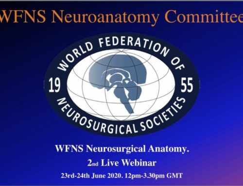 WFNS Neurosurgical Anatomy – 2nd Live Webinar – 23rd-24th June 2020